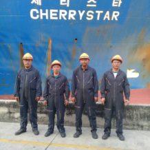 7261 cherry star_180207_0009